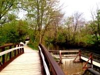 Canal In Lambertville